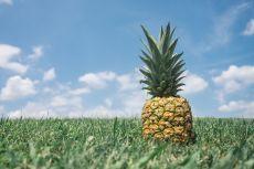 Ananasul - beneficii și curiozități